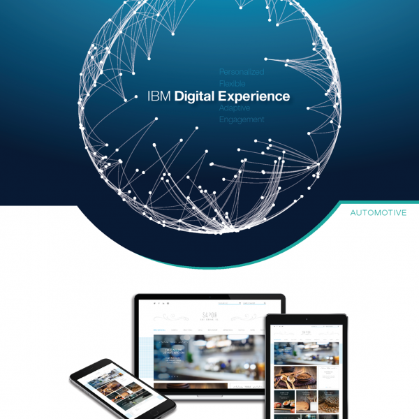IBM Digital Experience Sales Shot